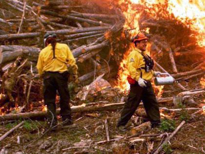 Firestorm team prescribed fire