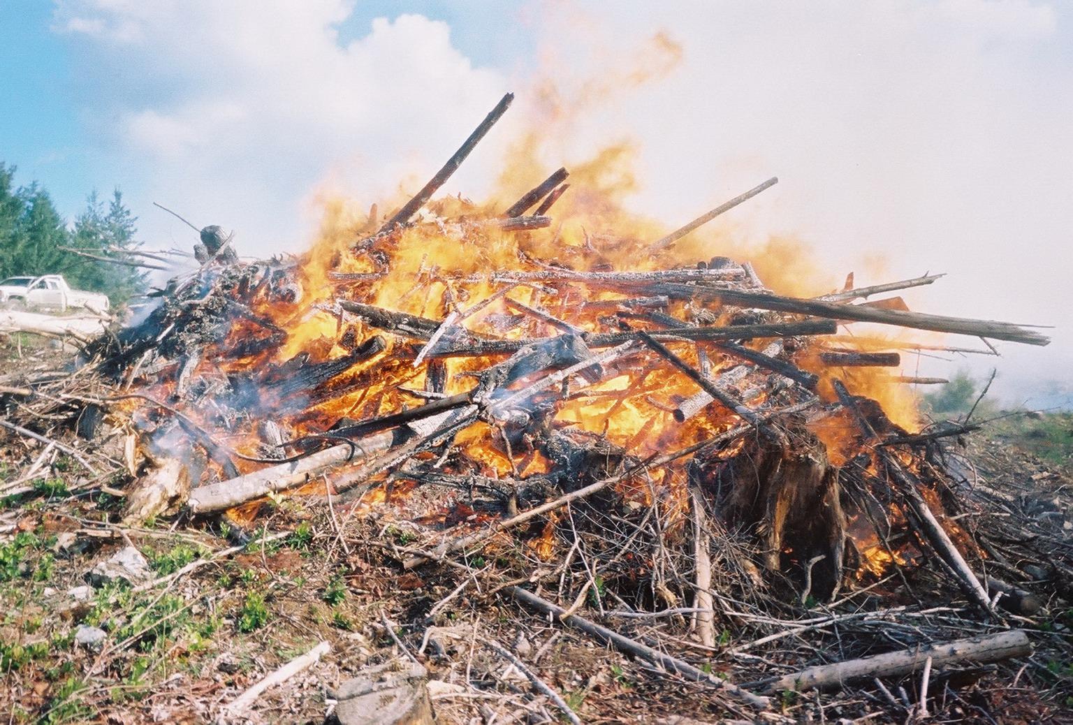 Slash Pile burn in Victoria