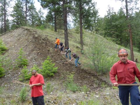 Firestorm team digging