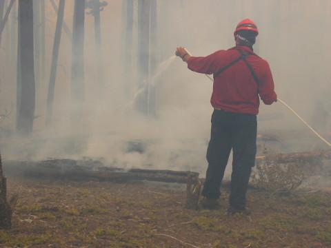 Firestorm Crew Fighting the Fire