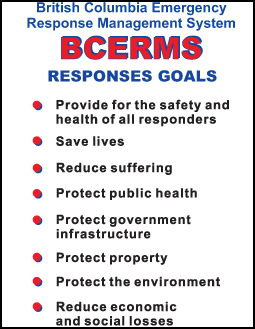 Talk to Firestorm about their BCERMS Goals