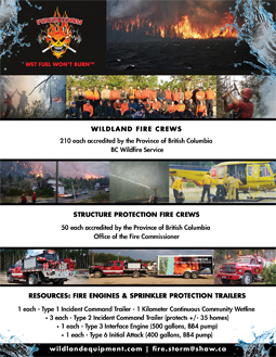 Firestorm Company Profile